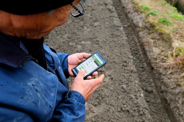農作業を終えた内容をスマホで入力する「鍋八農産」の従業員(トヨタ自動車提供)