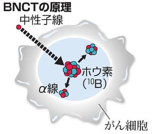 BNCTの原理