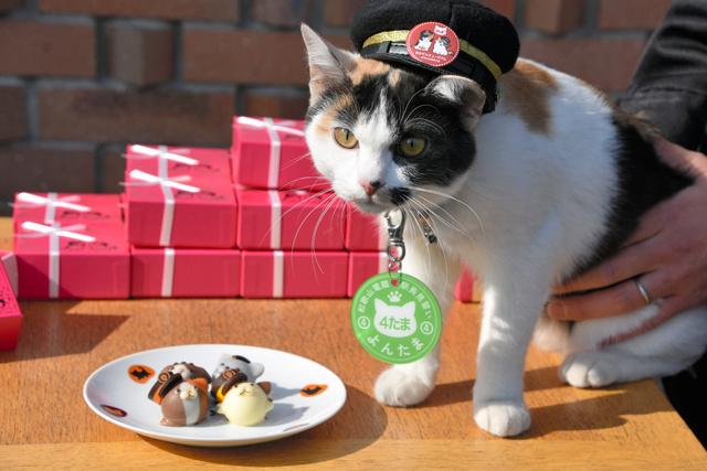 チョコレートをPRする駅長見習いの「よんたま」=紀の川市貴志川町神戸