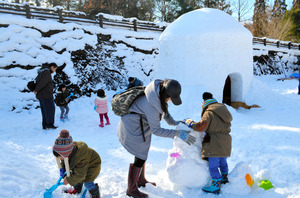 かまくらの中に入ったり、雪だるまをつくったりする家族連れら=川崎町のみちのく杜の湖畔公園