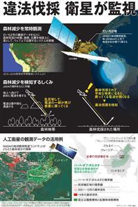 違法伐採、衛星が監視<グラフィック・甲斐規裕>