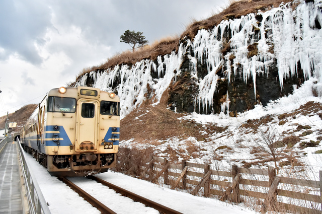 氷のカーテンに沿って走るJR五能線の車両=深浦町北金ケ沢