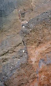 熊本地震を起こした日奈久断層帯。断層面に沿って左右の地層に食い違いが生じている=11日、熊本県甲佐町白旗山出、平井良和撮影