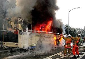 炎を上げて燃えるバス=広島県東広島市、同県警提供