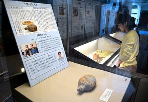 これまでの連載で登場した、本やゲートル、焼けた水筒などを紹介するコーナー=長崎原爆資料館