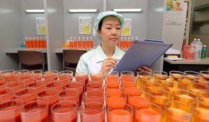 猿田裕子さん 1年間に検査で口にする飲料、スプーン5万杯分