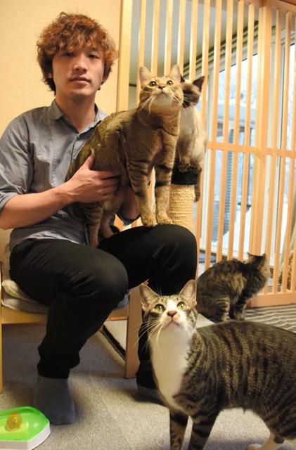 保護したネコたちと斎藤洸さん=札幌市南区
