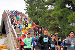 草加市が聖火リレーの誘致を目指す「草加松原」で走る市民ランナー=昨年3月