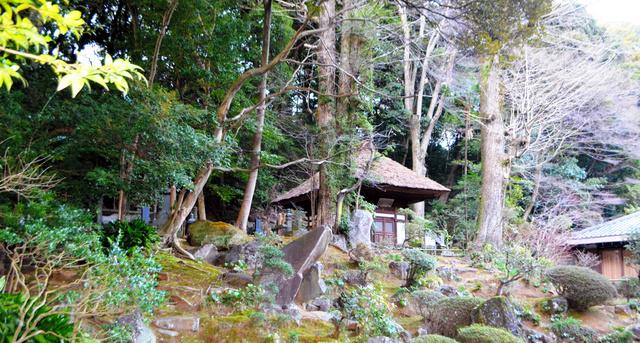 早雲寺林と枯山水庭園=神奈川県箱根町湯本