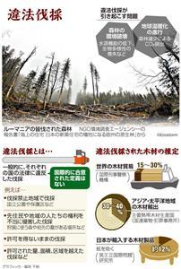 違法伐採/違法伐採とは…/違法伐採された木材の推定<グラフィック・福宮千秋>