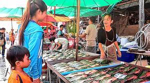 バンコクの魚市場で養殖魚ティラピアを売るドントゥリーさん(右)=6日、乗京真知撮影
