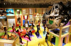恐竜の骨格標本や、ホッキョクグマのはくせいの前で、ヨガを楽しむ人たち=24日午後6時30分、東京・上野の国立科学博物館、長島一浩撮影