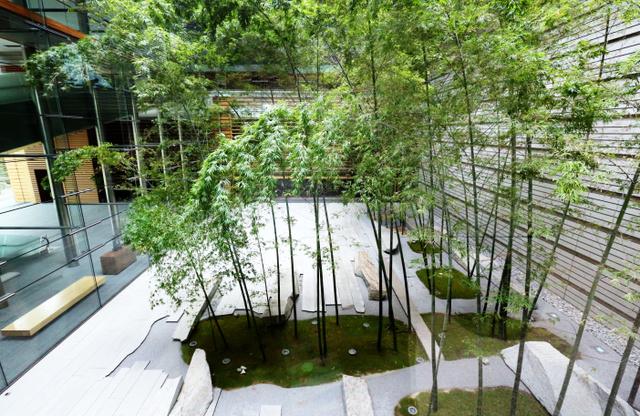 吹き抜け構造で竹が植えられた首相官邸の中庭=岩下毅撮影
