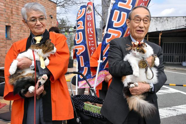 見つめ合うニタマ駅長(右)とジュリアーノ市長=和歌山県紀の川市貴志川町神戸