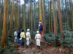 丹波原皮師養成林での演習風景=県教委提供