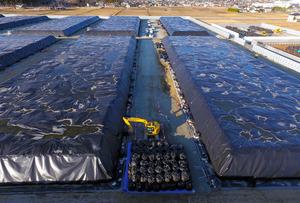 福島第一原発に近い地域では、除染事業で出た廃棄物が詰められたフレコンバッグが山積みにされ、シートがかけられている=福島県浪江町、金川雄策撮影