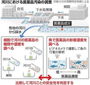 河川における医薬品汚染の調査