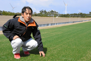 栽培中の芝に触れる谷本さん。この芝と同じ品種が甲子園球場の外野に張られている=北栄町松神