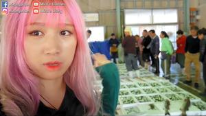 動画の一部。魚市場で活気のある競りを伝えるユーチューバー(大分県日出町大神、町提供)