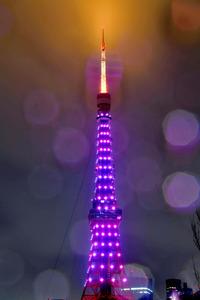 雨が降る中、桜の開花に合わせピンク色にライトアップされた東京タワー=21日午後7時55分、東京都港区芝公園、金居達朗撮影