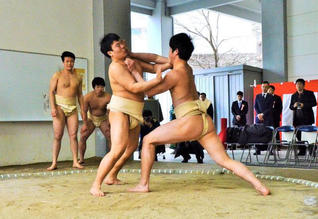 完成した土俵で力の入った初稽古を見せる主将の宇野(左)と前主将の中山=1日、大阪大豊中キャンパス、岩佐友撮影