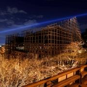 桜1千本、夜は別の顔 清水寺で試験点灯