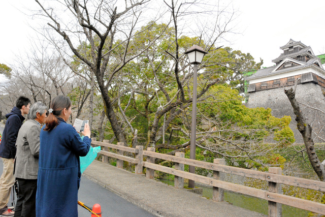 行幸坂から飯田丸五階櫓(やぐら)を眺める人たち=熊本市中央区二の丸