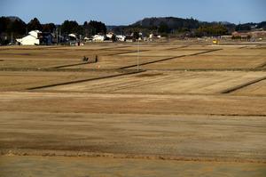 今月2日に除染作業が行われていた農地は、ほぼ作業が終わっていた=25日午後、福島県浪江町谷津田、福留庸友撮影