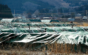 除染廃棄物が保管されている仮置き場=25日午後、福島県飯舘村、福留庸友撮影
