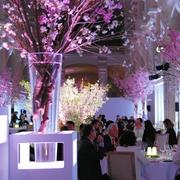 パリで桜や和食…一夜限りのお花見 ルーブル美術館近く