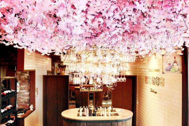 東京・渋谷にあるイタリアン料理店「エソラ」は店内にサクラの装飾をあしらい、「エア花見ができる」とアピールする(エソラ提…