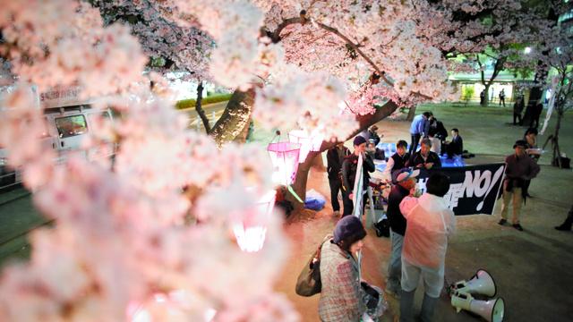 満開の桜の下、「共謀罪」法案反対などを訴える人々=6日夜、大阪市中央区、矢木隆晴撮影