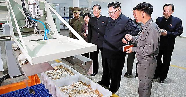 平壌キノコ工場を視察する金正恩・朝鮮労働党委員長。日時は不明。朝鮮中央通信が8日報じた=朝鮮通信