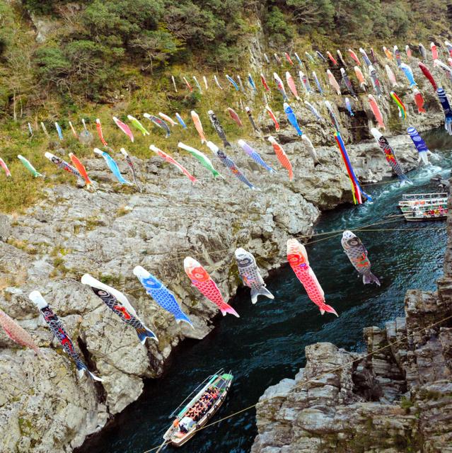 大歩危峡で風に揺られて泳ぐ160匹のこいのぼり=三好市山城町西宇