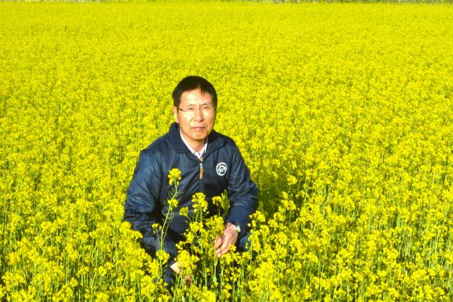 休耕田いっぱいに広がる満開の菜の花と山内康一さん=楢葉町北田