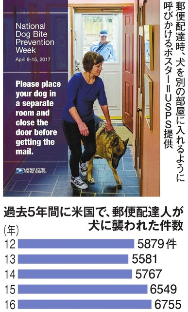 過去5年間に米国で、郵便配達人が犬に襲われた件数