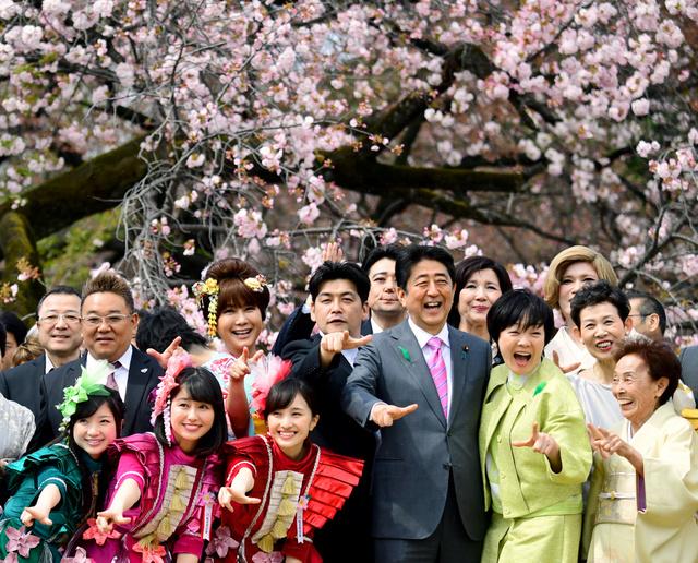 【桜は日本じゃなく韓国の花なんです】韓国が桜の「起源」に固執する理由判明へ [無断転載禁止]©2ch.netYouTube動画>2本 ->画像>52枚