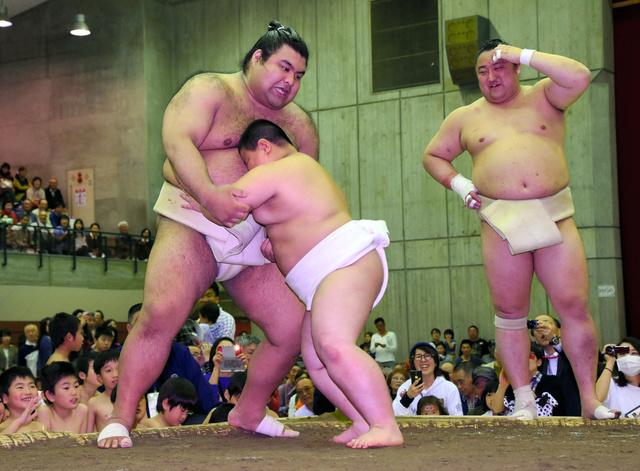 関脇高安(左)に挑む菊池寛人くん=水戸市の青柳公園市民体育館