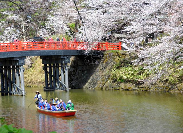 中堀の「杉の大橋」の下をくぐって進む和船。乗船時間は約20分