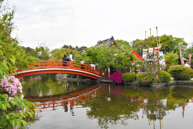 神泉苑はほとんどが池だ。神泉苑祭の間、善女竜王社(右手)の前に剣鉾が立てられた=いずれも京都市中京区