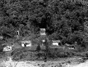 神泉苑はほとんどが池だ。…