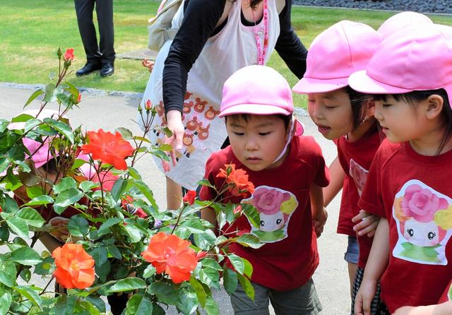 「いいにおい」。バラの香りをかぐ保育園児たち=村山市の東沢バラ公園