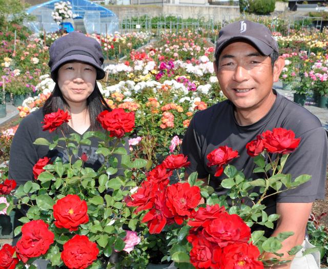 丹精込めて育てたバラを手にする桝井紀行さん、和子さん夫婦=下市町阿知賀