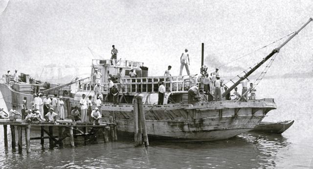 1954年。焼津から回航され、東京・月島の晴海岸壁に着いた第五福竜丸
