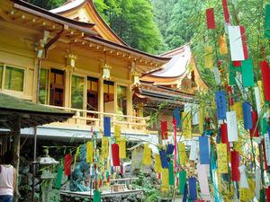 貴船神社の七夕まつり=2005年8月 塩原直美撮影