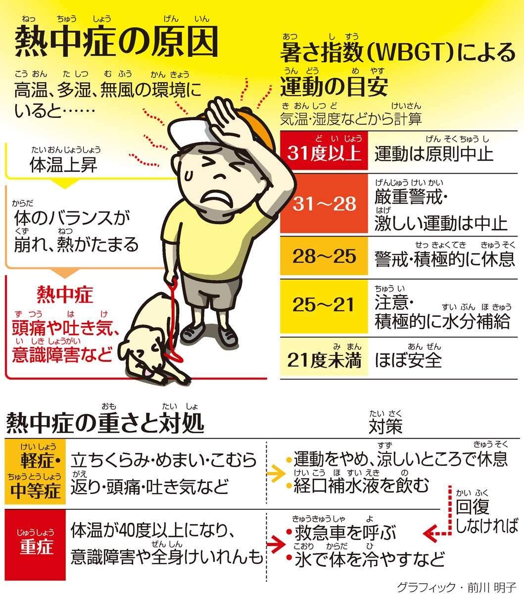 熱中症(ねっちゅうしょう)の原因(げんいん)/熱中症の重(おも)さと対処(たいしょ)<グラフィック・前川明子>