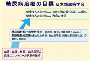 図 糖尿病治療の目標 (出典:日本糖尿病学会編・著「糖尿病治療ガイド2016-2017」、文光堂、2016)