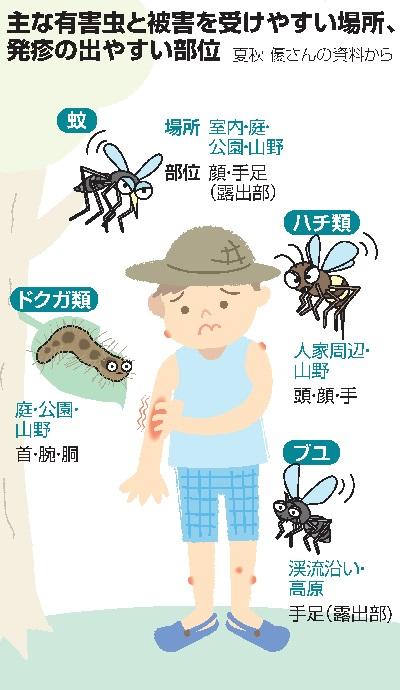蚊やブユ\u2026夏の虫刺され、子どもは「かき壊し」に要注意:朝日