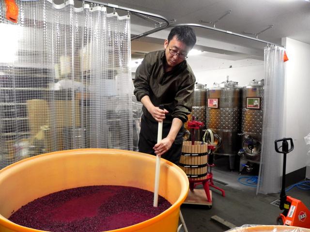 タンクいっぱいのブドウに櫂(かい)を入れる、「深川ワイナリー東京」醸造責任者の上野浩輔さん=東京都江東区