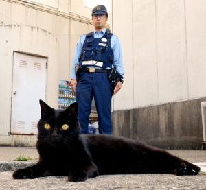 朝は巡回、昼は少年係に出勤 行橋署の黒猫ジジ 福岡